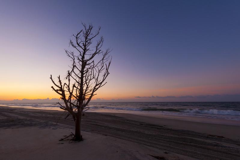Hatteras Seashore Sunrise Three.jpg