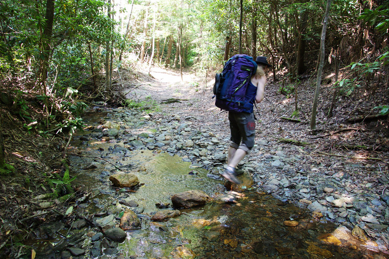 On the first day of the hike, there were several small stream crossings. These were no match for the river crossings that awaited us later.