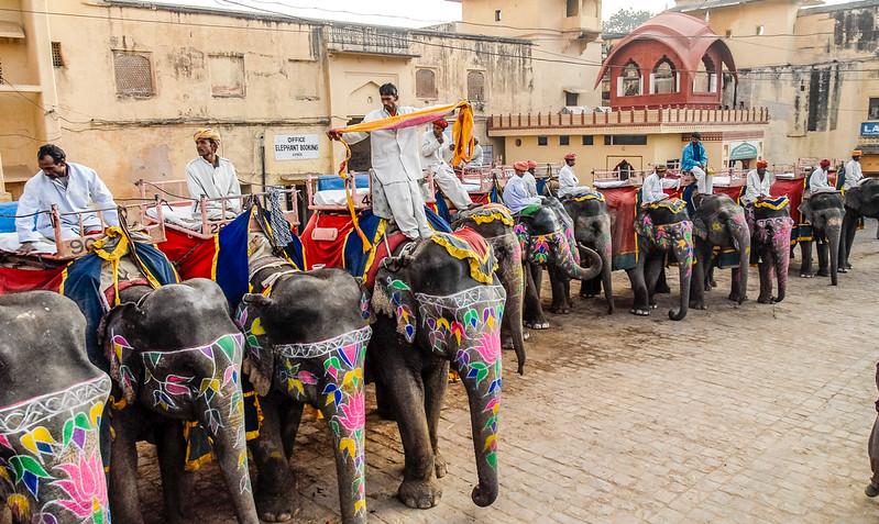 Jaipur_1206_731.jpg