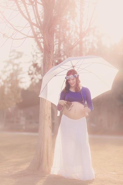 Jhessica Barros Maternity-49.jpg