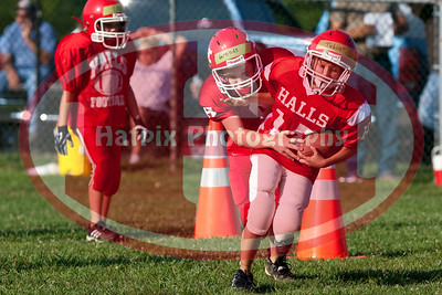Nicks Minor Pee Wee Year