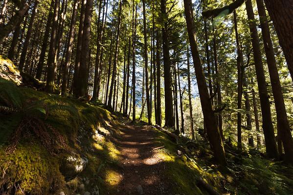 Middle Fork Hike
