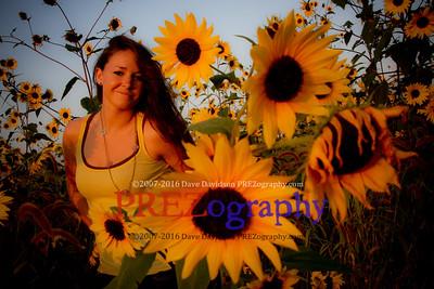 Nakaiya In Sunflowers