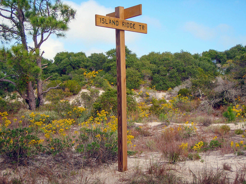 Island Ridge Trail Little St. George Island