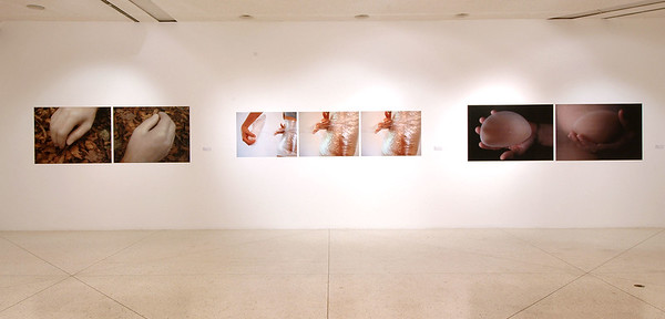fe, cuerpo y artificio, solo exhibition at Museo Alejandro Otero, Caracas, 2006