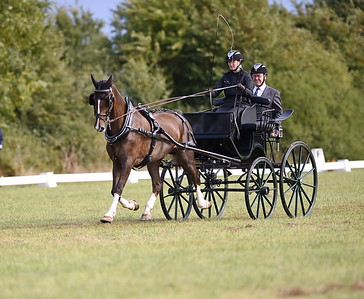 ALL IRELAND CUFFSGRANGE   Dressage