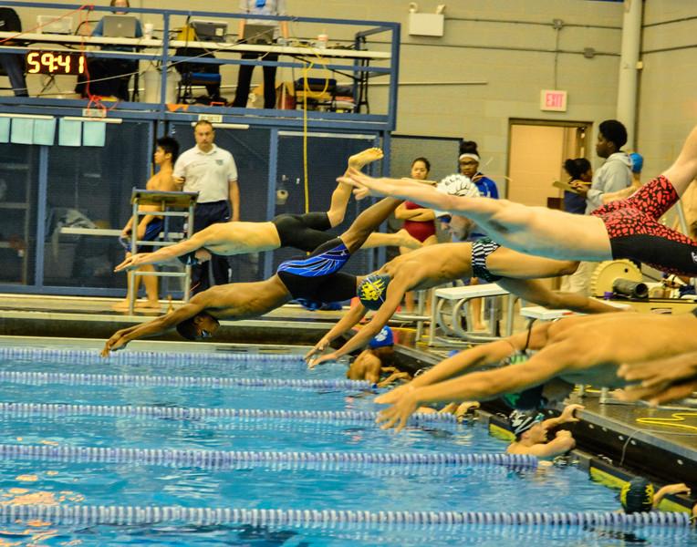 Swim Meet 11-09-13 (511 of 1544).jpg