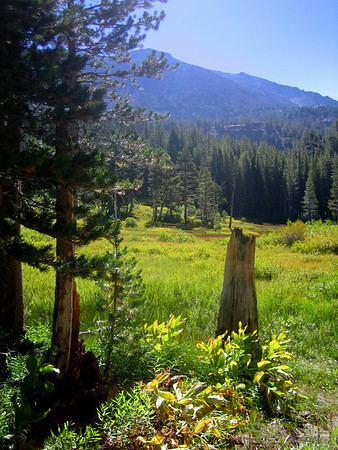 Mammoth Lakes, August 2006