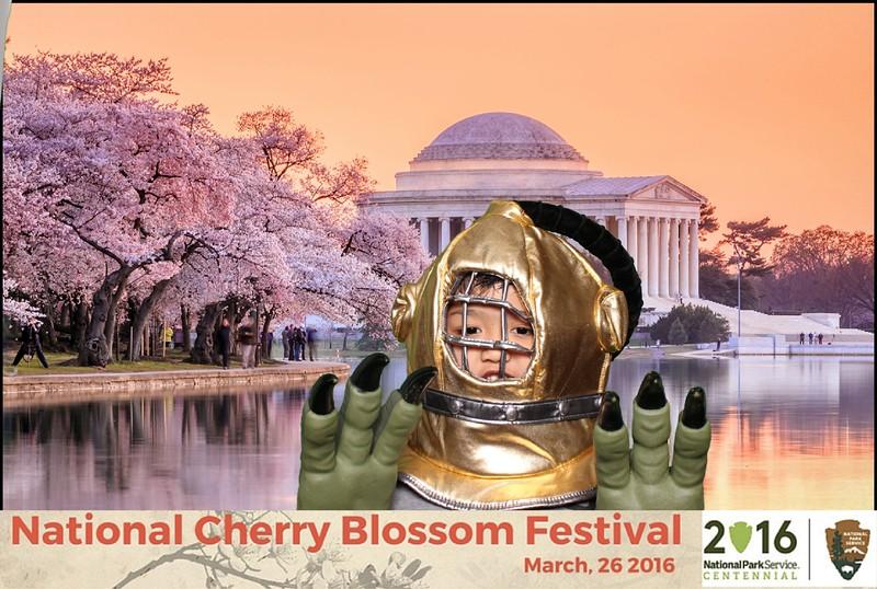 Boothie-NPS-CherryBlossom- (81).jpg