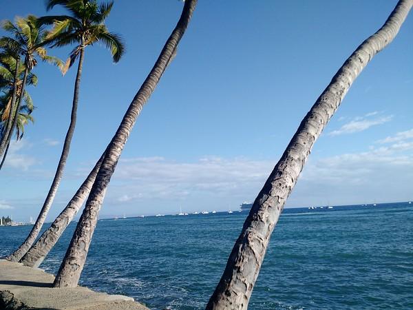 Day 7 - Hawaii Ocean Rafting