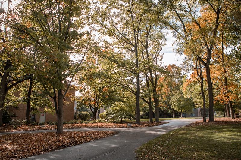 AVS_Campus_Sept-Oct2020-16.jpg