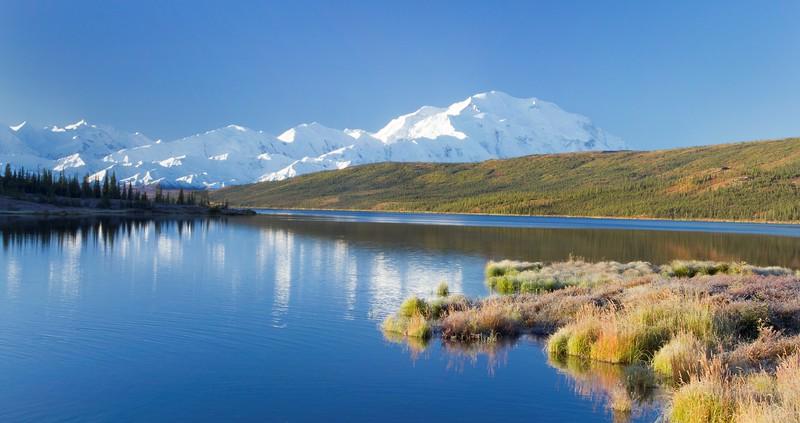 A view over a lake at Mt. Denali