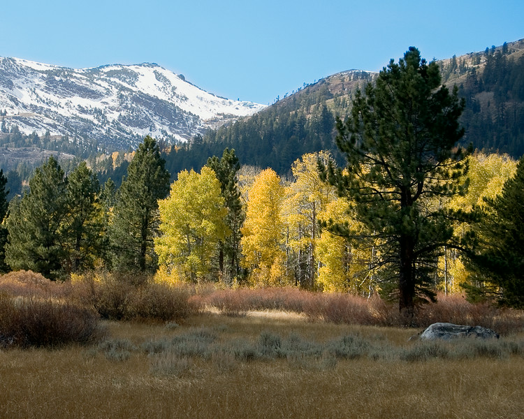 Fall in the Sierras