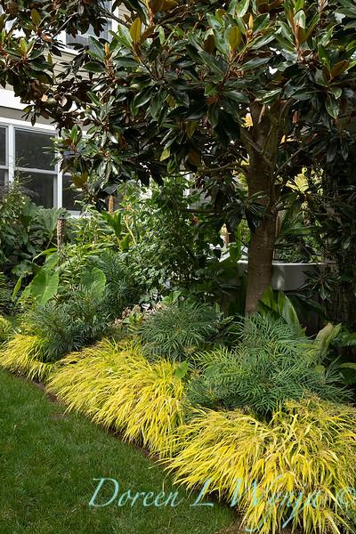 Lisa Bauer - designer's garden_1298.jpg