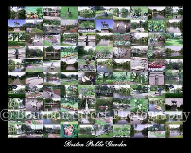 Boston Public Garden Collage