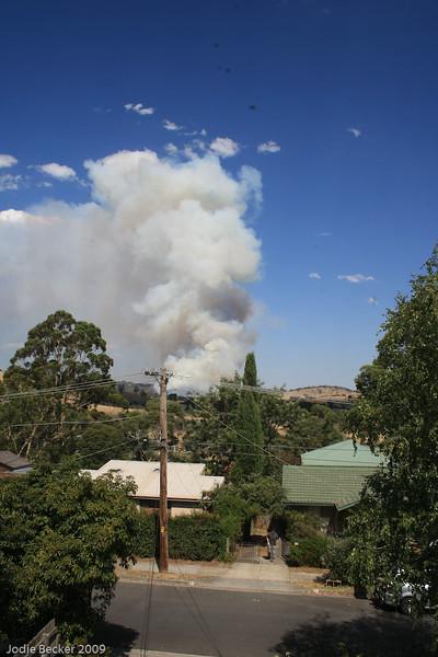 bushfires-59.jpg