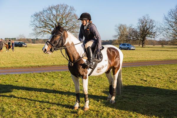 Fitzwilliam Hunt - Pony Club