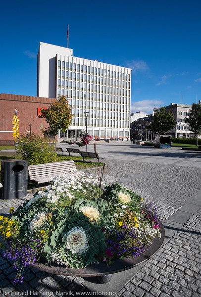Narvik rådhus