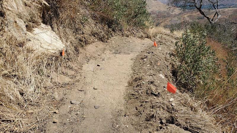 20190810032-Los Pinetos trailwork.jpg