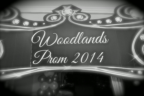 Woodlands Prom 2014