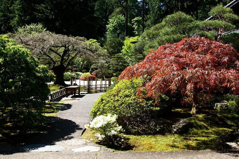 Portland Japanese Garden 6-3-11  1779.jpg