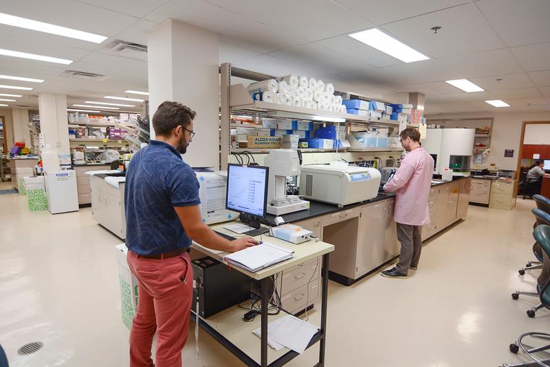 CHIRP 2019 labs060.JPG