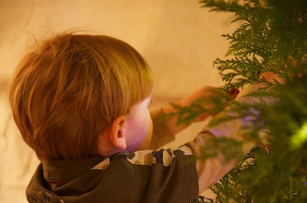 11-25 - Christmas Tree Cutting and Decorating - Smyrna and Powder Springs, GA
