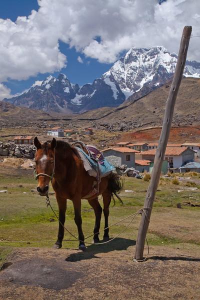 Peru_033.jpg