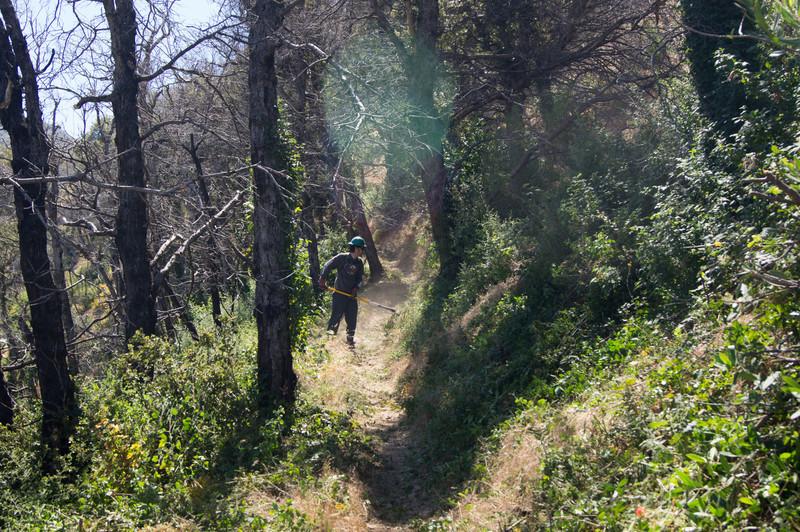 20120630048-Trailwork, MWBA, Sunset Ridge.jpg