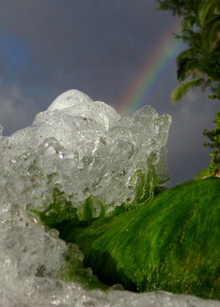 Rainbow in a mossy wave North Shore of O'ahu, Hawai'i