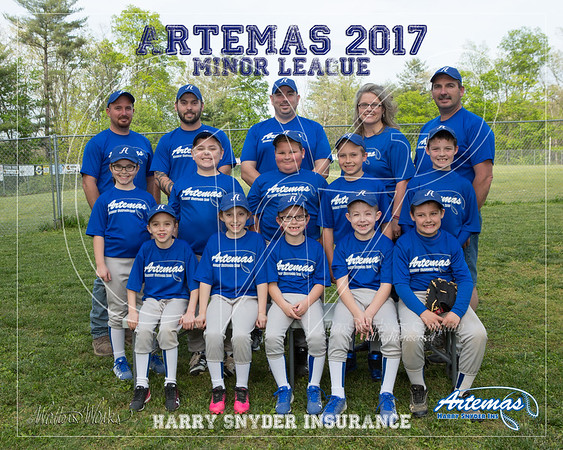 Artemas 2017 Minor Gray