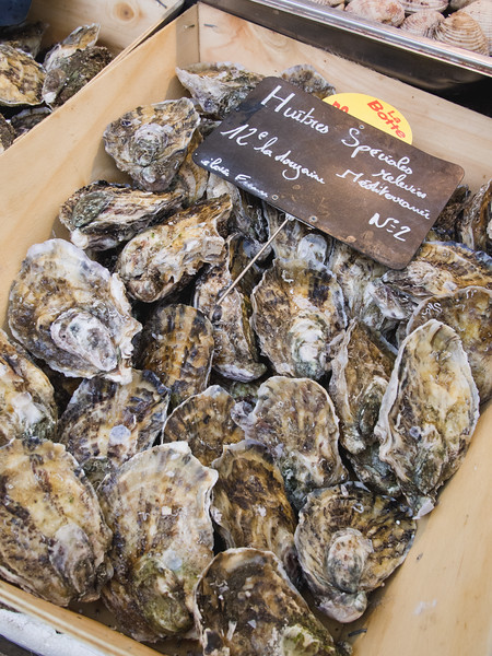 aix en provence market oysters.jpg