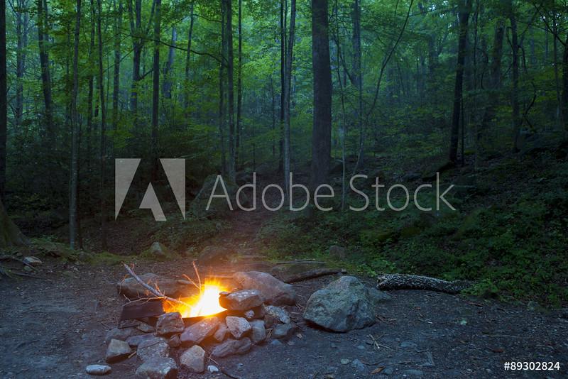 AdobeStock_89302824_WM.jpeg