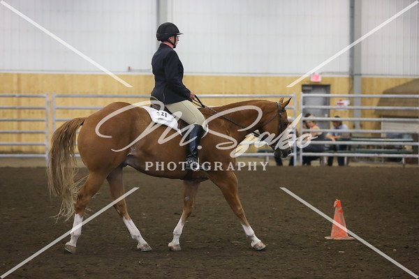 Hunt Seat Equitation