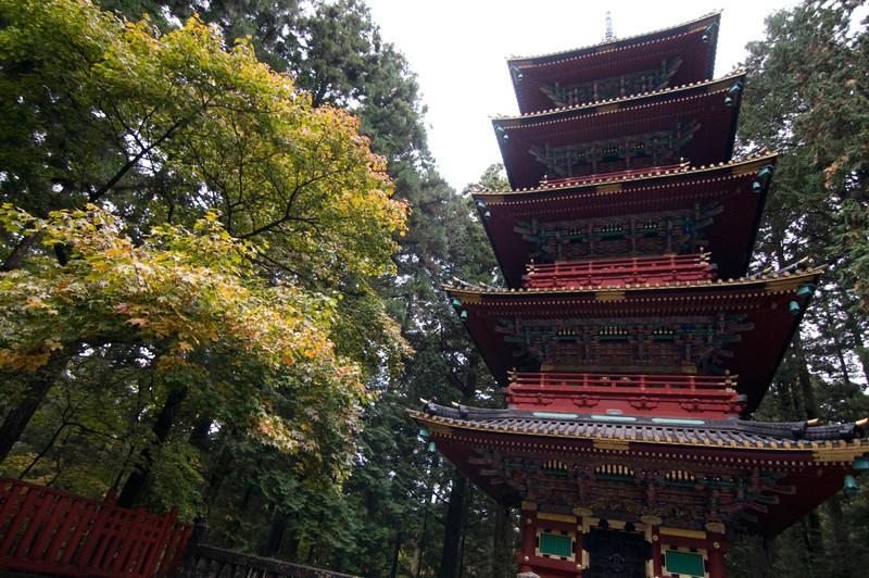 Japan_2010_NAT9027.jpg