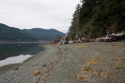 Nitnat Lake, November 2008
