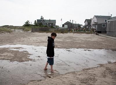 Sandy Neck, June 2009