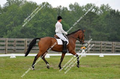 2010-05-29 USEA Horse Trial