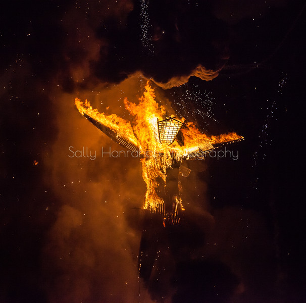 The Burn ~ Burning Man 2015