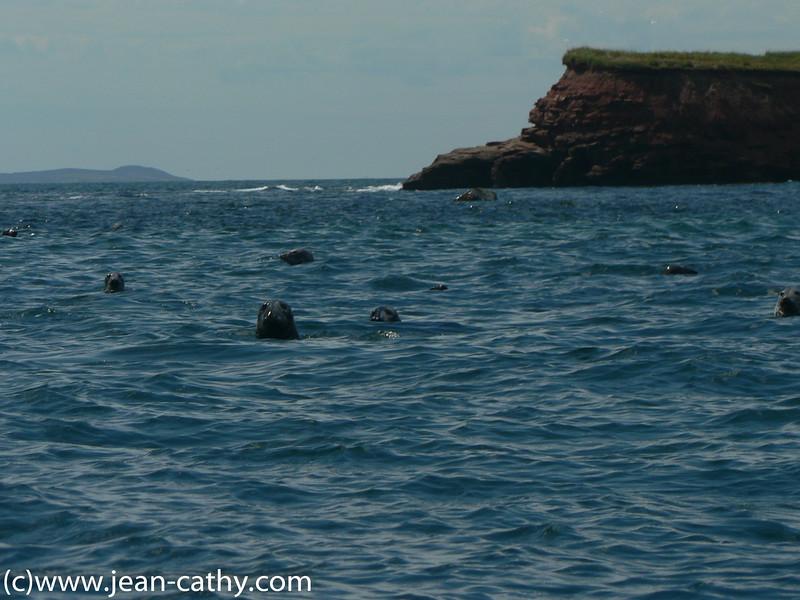 Maritimes_2007-IDM- (18 of 57)