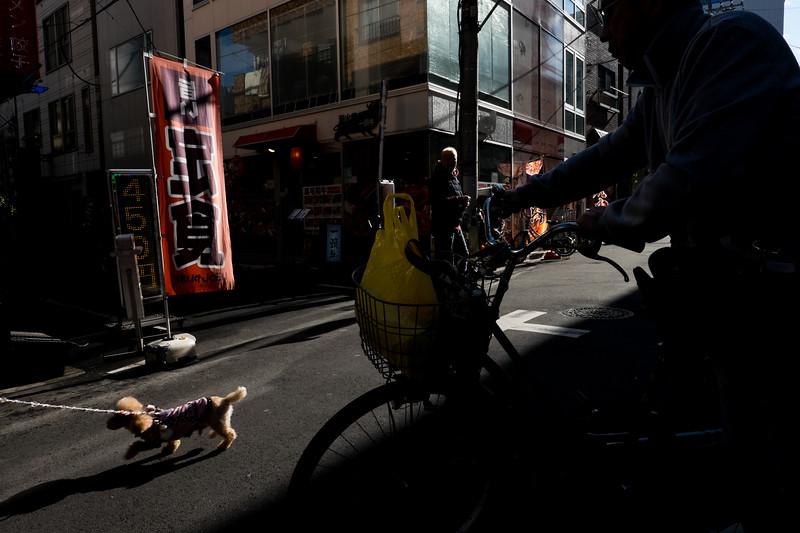 2019-12-21 Japan-448.jpg
