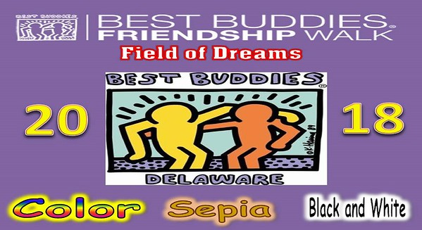 Best Buddies Friendship Walk 2018