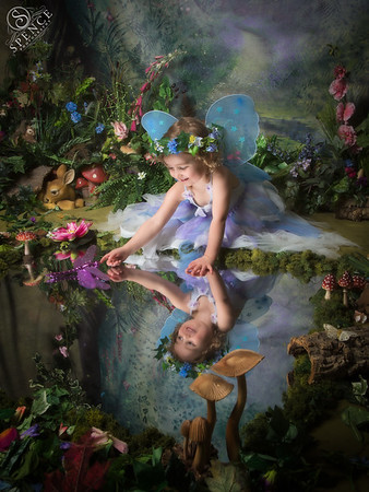 The Fairy Experience - October 2015