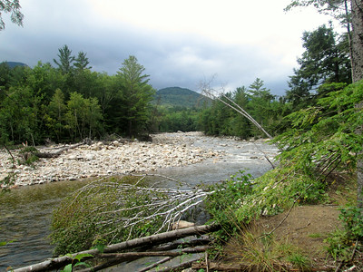 Cedar Brook redlining hike: Aug. 17, 2014