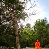 { monk in cambodia }