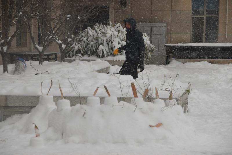 [20100103] 1st 2010 Snow in Beijing (93).JPG