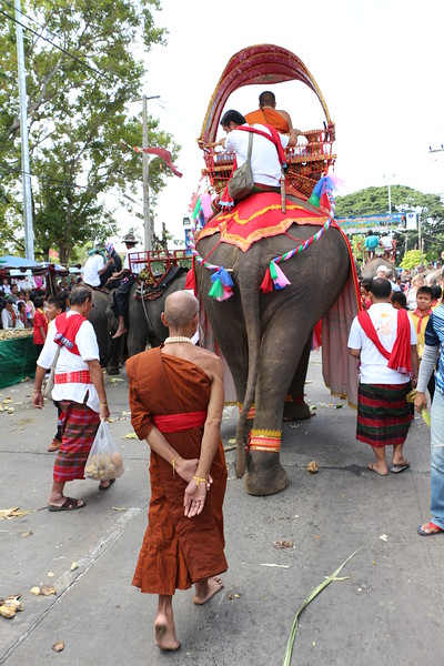 2014-11-14 Surin Elephant Welcome Feast 448.JPG