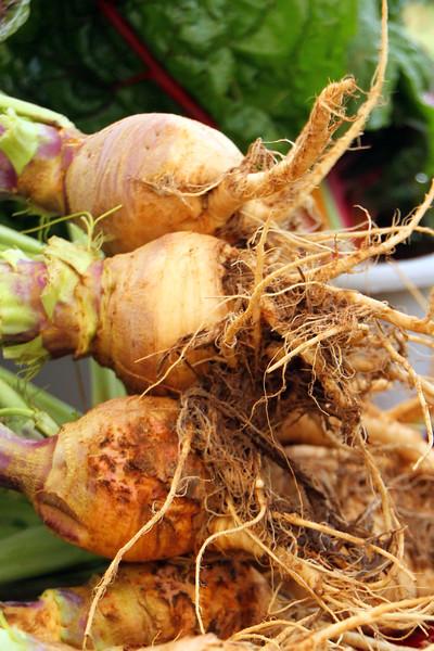 Turnips-3173608286-O.jpg