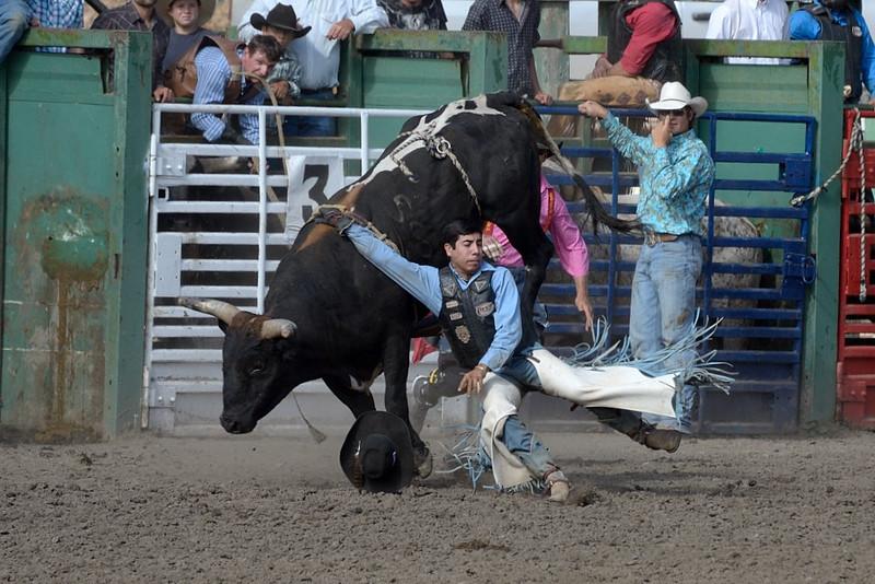 Bull Rider Series