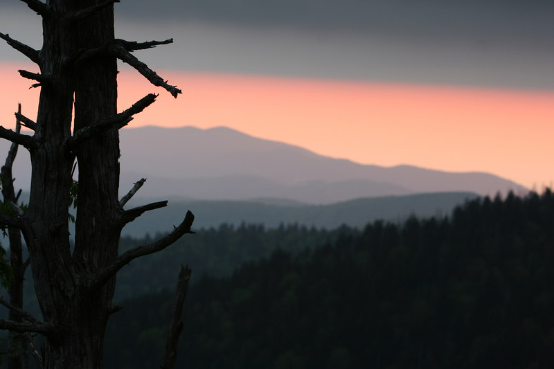 Clingman's Dome looking west.